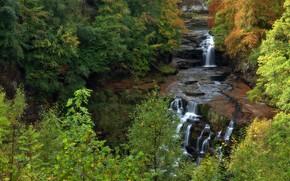 лес, деревья, речка, водопады, скалы, осень, природа