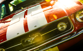 1967 Ford Mustang Fastback, Ford Mustang, Fastback, Ford, Mustang
