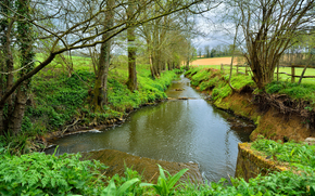 Balcombe, South Downs National Park, England.речка, деревья.пейзаж