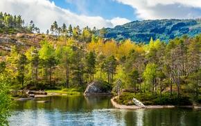 otoño, río, árboles, Hills, paisaje