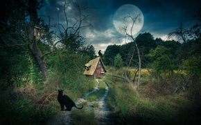 road, trees, moon, cabin, raven, cat, landscape