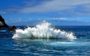 Meer, surfen, Schaum, Spray, Steine, Rocks