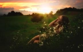 chica, humor, prado, Flores, puesta del sol