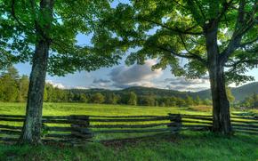 Adirondack, Nova Iorque, prado, ?rvores, cerca