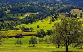 Hills, árboles, casa, paisaje