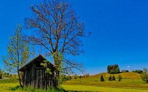 campo, Hills, casa, árbol, paisaje