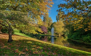 autunno, pond, parco, alberi, FONTANA, paesaggio