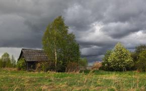 Деревня, село, непогода, дождь, тучи, ветер, изба, дом, деревья, берёза, трава