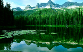 湖, 山, 树, 景观