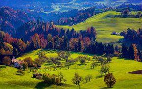 осень, холмы, деревья, дома, пейзаж