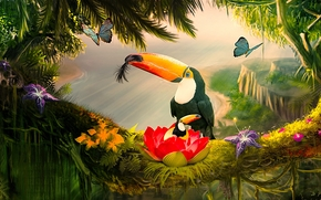 toucan, birds, Butterflies, 3d, art
