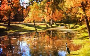 autunno, parco, pond, alberi, airone, paesaggio
