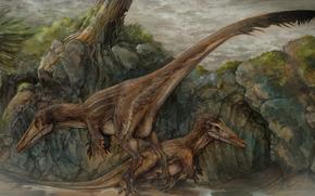 Austroraptor, dinosauri, Animali antico, pittura