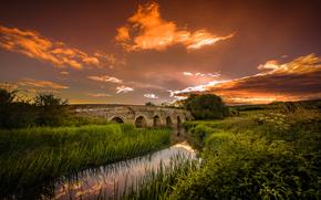 закат, речка, мост, деревья, пейзаж
