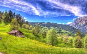 Montañas, Hills, árboles, casa, paisaje
