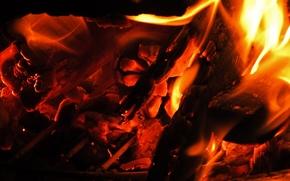 FEU, feu, charbons, Macro