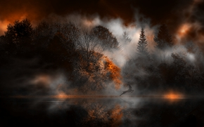 Вечер, сумерки, лес, деревья, природа