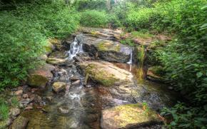 речка, лес, водопад, природа