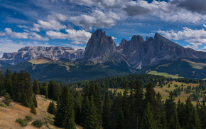 Mountains, forest, TRACK, sky, clouds, South Tyrol, Italy, landscape