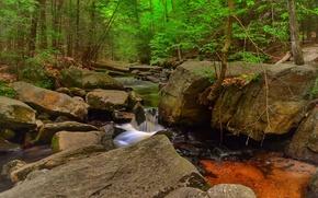лес, деревья, речка, скалы, водопад, природа