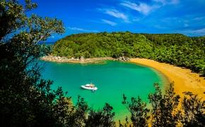 Abel Tasman National Park, Nuova Zelanda, mare, puntellare, imbarcazione, alberi, paesaggio