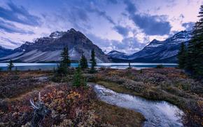 Alberta, Parco Nazionale di Banff, Bow Lake, Canada, tramonto, lago, Montagne, paesaggio