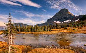 Hidden Lake, Parco nazionale Glacier, Hidden Lake, Parco nazionale Glacier, Montagne, lago, alberi, paesaggio