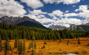 Peter Lougheed Provincial Park, Alberta, Canada, Mountains, trees, autumn, landscape