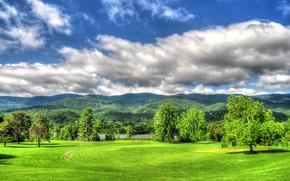campo, Montañas, Hills, árboles, paisaje