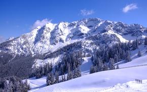 winter, Mountains, trees, landscape