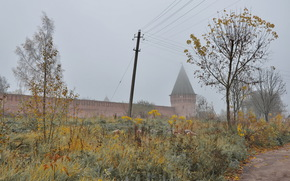 Smolensk, Russia, fortress, wall, trees, leaves, autumn, grass, post, wire, road