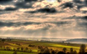 campo, prati, alberi, cielo, paesaggio