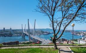 мост, море, Россия, горы, Владивосток, сопки, дома, корабли, краны, дерево, дорожки, трава, небо, город