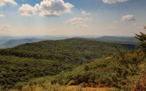 Crimea, Rusia, Montañas, bosque, espacios, cielo, nubes, naturaleza, paisaje