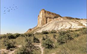 White Rock, Crimea, Rusia, cielo, pájaros, naturaleza, paisaje