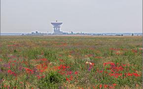 Витино, Евпатория, Крым, Россия, поле, трава, цветы, локатор, РТ-70, природа, пейзаж