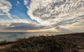 Витино, Евпатория, Крым, Россия, море, берег, трава, небо, облака, природа, пейзаж