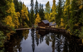 лес, деревья, водоём, мост, осень, дом, пейзаж