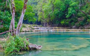 река, лес, деревья, водопад, природа