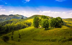 Hills, árboles, paisaje