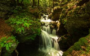 лес, речка, водопад, скалы, природа