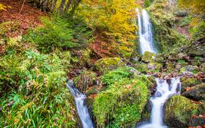 waterfalls, autumn, stones, trees, nature