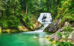 лес, деревья, водопад, речка, природа