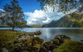 Austrumdalsvatnet, Bjerkreim, Rogaland, Norwegia, Bjerkreim, Rogaland, Norwegia, jezioro, Góry, drzewo, kamienie