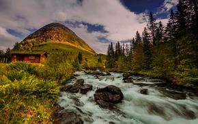 rio, colina, Noruega, cabana, ?rvores