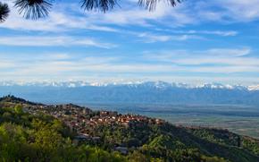 горы, небо, Грузия, деревья, Cигнахи, город, пейзаж