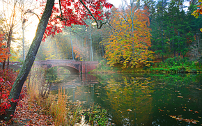 autumn, river, bridge, trees, landscape
