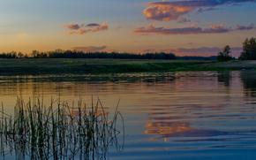 вода, лес, речка, деревья, Река, трава, небо, облака, сумерки, природа, пейзаж