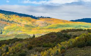 otoño, Hills, Montañas, árboles, paisaje