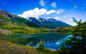 Parco Nazionale Torres del Paine, patagonia, Chile, Parco Nazionale Torres del Paine, Patagonia, peperoncino, lago, Montagne